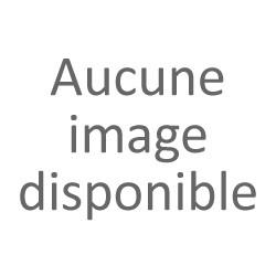 Porte-clés Autosculpt Isetta BMW, Iso et Velam