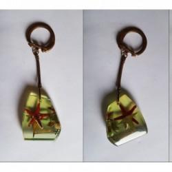 porte-clés Vitaneuf, étoile de mer, huître (pc)
